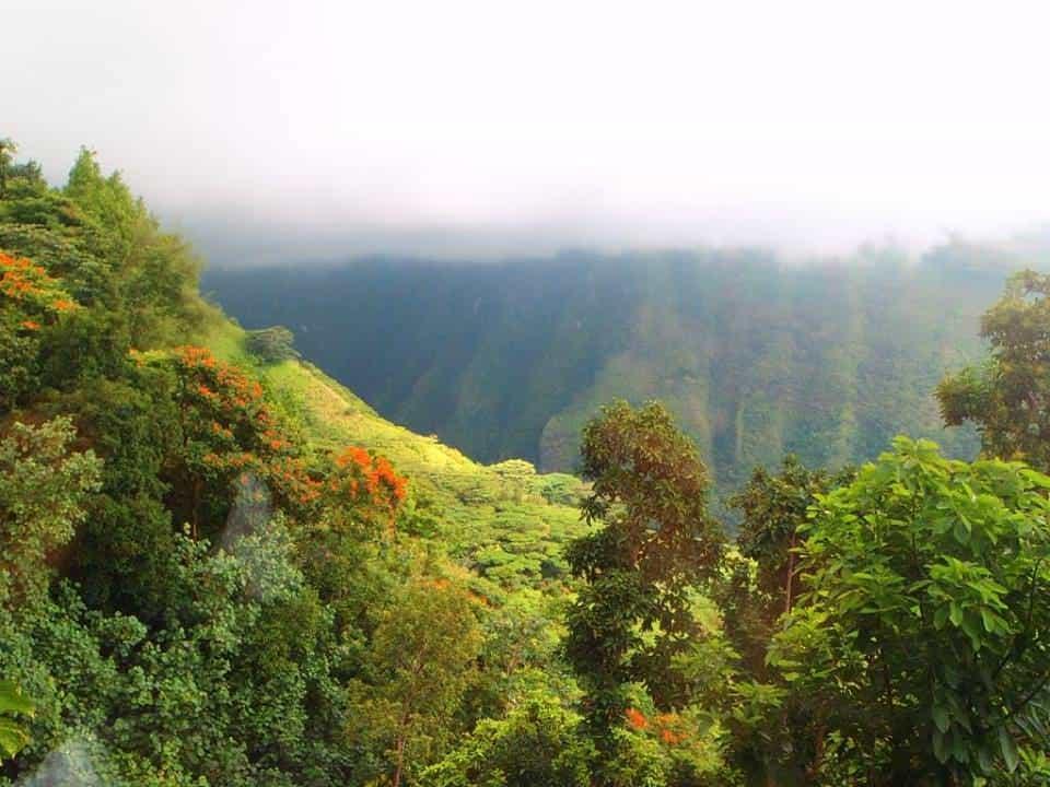 Vue du belveder à Tahiti